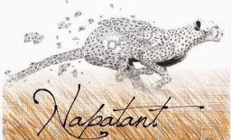 La piste de Napatant…