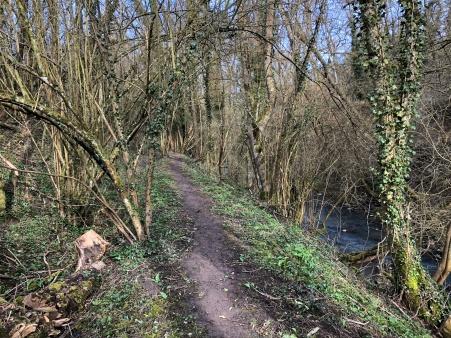 Foxtrail ruisseau